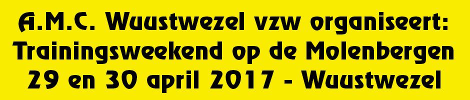 banner_website2017b
